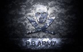 Картинка зимний, логотип, logo, texture, army, Point Blank, поинт бланк, комуфляж