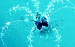 Картинка линии, бабочки, абстракция
