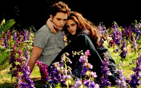 Картинка поляна, Kristen Stewart, Robert Pattinson, beautiful, влюблённые, meadow, twilight saga