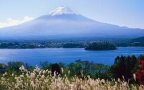 Картинка трава, Япония, залив, Japan, Фудзияма, Fuji