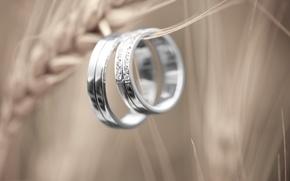 Картинка отражение, камни, кольца