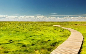 Картинка USA, grass, United States, sky, clouds, Massachusetts, route, America, United States of America, Wellfleet