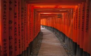 Картинка надпись, столбы, Япония, иероглифы, тунель, Тоннель из Красных ворот к святилищу Фушими Нари