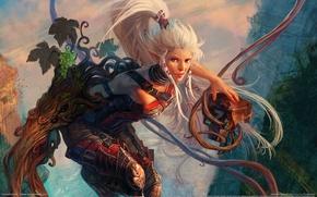 Картинка девушка, воин, эльфийка, dominance war