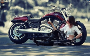 Картинка Girl, Harley, Motorcycles