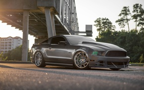 Картинка Mustang, Ford, Bridge, GT, ACE Driven