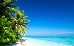 Обои песок, пляж, небо, вода, солнце, облака, свет, пейзаж, природа, пальмы, океан, берег, остров, light, beach, ...