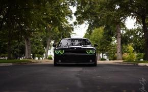 Картинка Dodge, Challenger, SRT