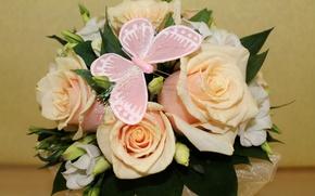 Картинка цветы, фото, бабочка, розы, букет, фрезия