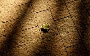 Картинка осень, Лист, брусчатка, тени
