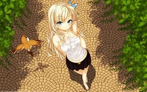 Картинка девушка, парк, птица, дорожка