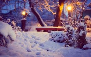 Картинка зима, снег, деревья, следы, природа, освещение, двор, фонари, лавка, кусты