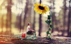 Обои бутылка, ситуация, цветок, парень