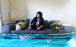 Картинка вода, кошки, комната, диван, человек