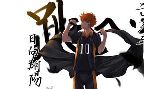Картинка аниме, арт, парень, волейбол, Haikyuu, Хината Сё