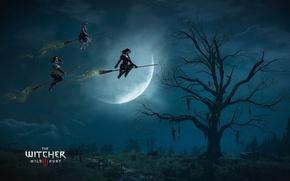Картинка Ведьмак, The Witcher, CD Projekt RED, The Witcher 3: Wild Hunt, Анджей Сапковский, Ведьмак 3: ...