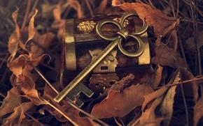 Картинка осень, листья, металл, ключ, шкатулка, опавшие