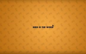 Обои минимализм, текстура, птица, надпись