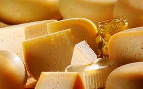 Картинка еда, сыр, молочные продукты, ассортимент