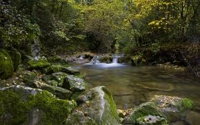 Картинка осень, лес, деревья, река, камни, Франция, France, Турв, Caramy Gorge, Tourves