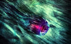 Обои цвет, рисунок, медуза
