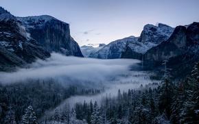 Картинка зима, лес, деревья, долина, Калифорния, California, Национальный парк Йосемити, Yosemite National Park, горы Сьерра-Невада, Sierra …