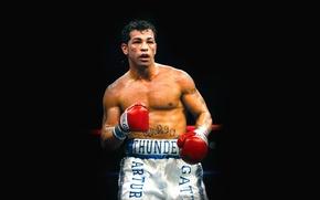 Картинка бокс, черный фон, боксер, boxing, Arturo Gatti, Артуро Гатти