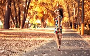 Картинка осень, листья, девушка, парк, платье, ножки, прелесть, Антон Печкуров
