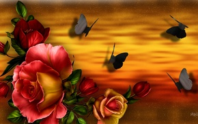 Картинка бабочки, цветы, коллаж, роза, букет