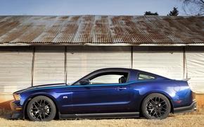 Обои мускул, синий, RTR, Mustang, Package
