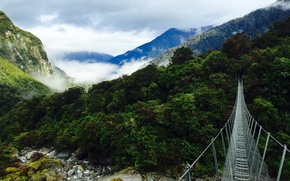 Картинка лес, горы, мост, природа