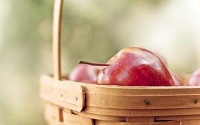 Обои обои, корзина, яблоки, фрукты, витамины, wallpapers