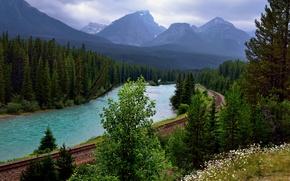 Картинка лес, деревья, горы, река, Канада, железная дорога, Банф, Bow river