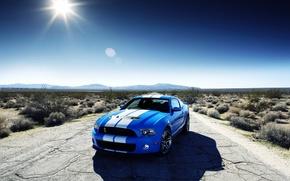 Обои Shelby gt 500, синий, Ford