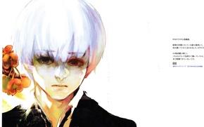Картинка боль, седой, Ken Kaneki, Токийский Гуль, одержимый, tokyo Ghoul