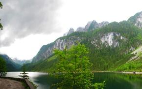 Картинка лес, облака, деревья, горы, озеро, скалы, Австрия, Gosausee