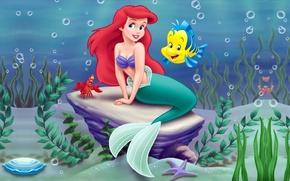 Обои море, водоросли, мультфильм, краб, русалка, Disney, Ariel, Ариэль, Дисней, Маленькая русалочка, Little mermaid, рыба-луна