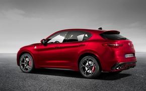 Картинка Alfa Romeo, Внедорожник, Альфа Ромео, Quadrifoglio, Stelvio