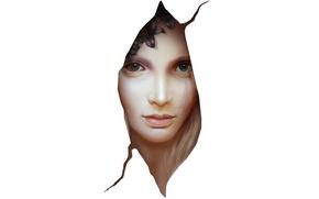 Картинка цветы, узор, Девушка, белый фон, шрам