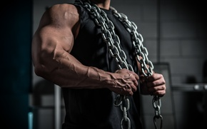 Картинка chains, muscular, arms, broad chest
