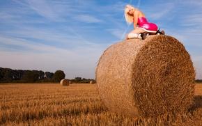 Картинка поле, небо, зад, блондинка, сено, ass, Susan Wayland, sky, field, blonde, hay