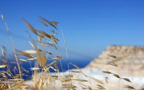 Картинка трава, горы, Море, отсров