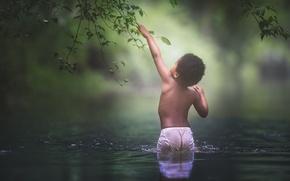 Картинка вода, ветки, мальчик, темнокожий