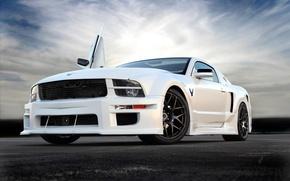 Обои custom, muscle car, mustang, ford