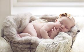 Картинка корзина, сон, девочка, младенец