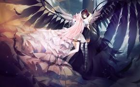 Картинка девушки, крылья, аниме, перья, арт, akemi homura, kaname madoka, девочка-волшебница мадока, ultimate madoka, akuma homura, …