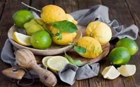 Картинка тарелка, лайм, фрукты, цитрусы, лимоны, Anna Verdina