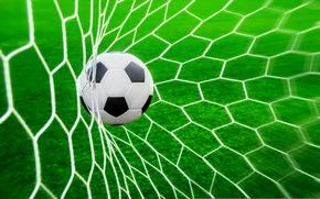Обои трава, сетка, газон, футбол, мяч, гол