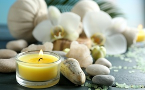 Картинка цветы, камни, свечи, relax, flowers, спа, still life, candles, соль, spa, salt, wellness