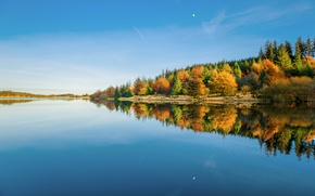 Картинка зима, лес, небо, вода, отражения, деревья, Англия, Великобритания, Январь, водохранилище, графство Девон, национальный парк Дартмур